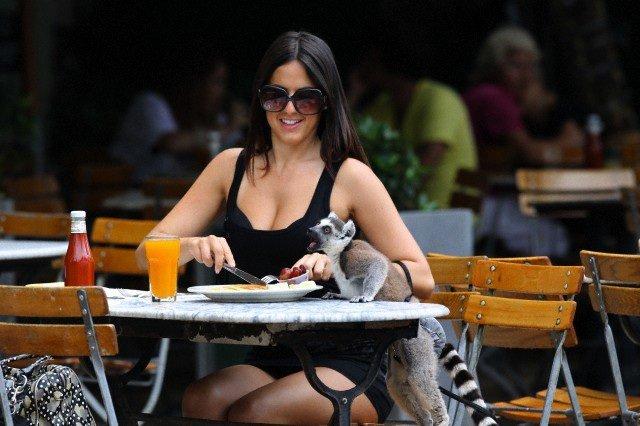 Animali domestici ecco i pi strani del mondo the for Cani da tenere in casa