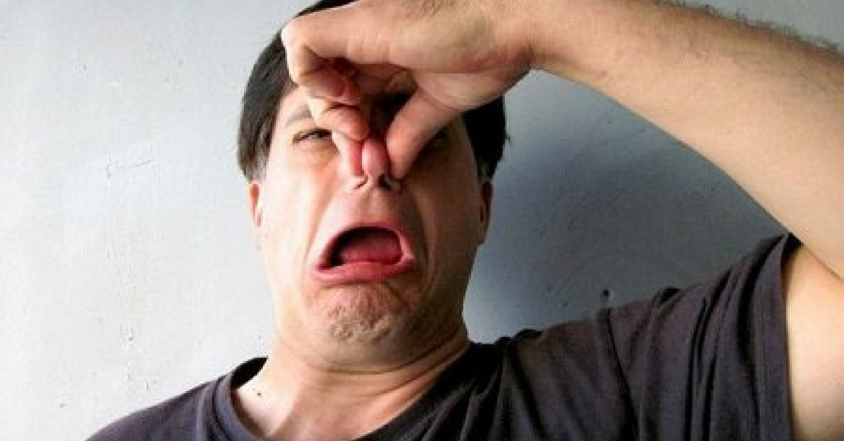 la scienza spiega l'odore delle flatulenze