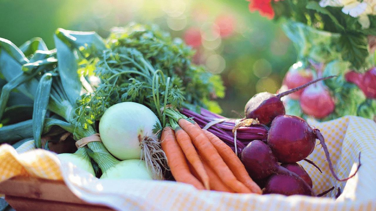 In continua crescita l'e-commerce nel settore alimentare, un must per gli italiani
