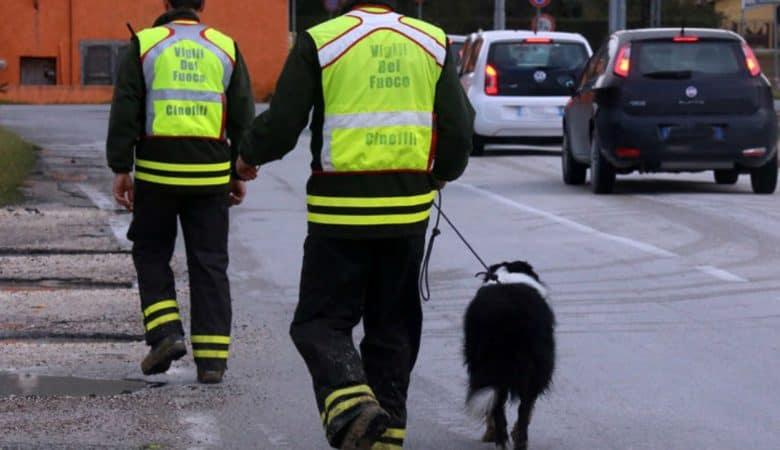 Brescia, interrotte le ricerche della 12enne scomparsa nei boschi