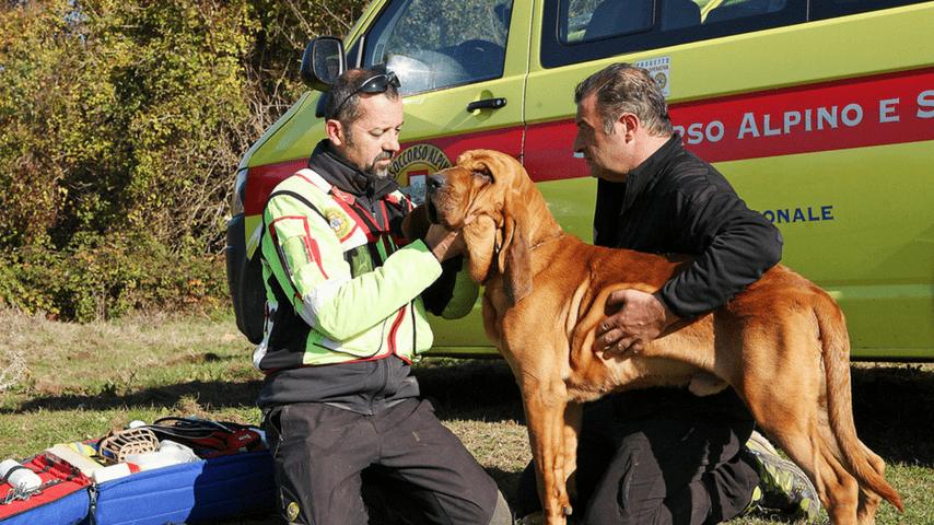 Anche le unità cinofile del Corpo nazionale soccorso alpino e speleologico hanno partecipato alle ricerche