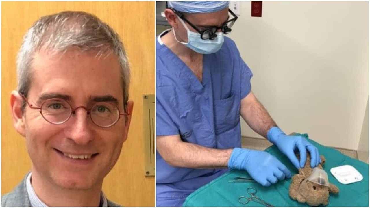 chirurgo opera orsetto