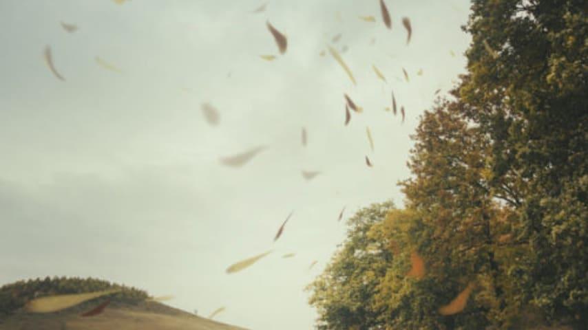 vento-forte