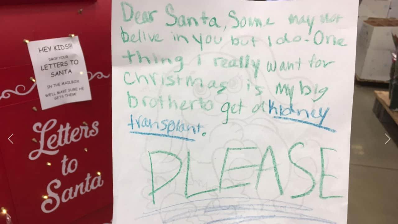 """Una bimba a Babbo Natale: """"Caro Babbo, vorrei un rene per mio fratello"""""""