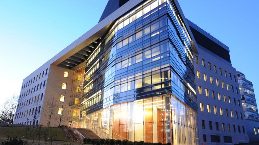 Albert Einstein College of Medicine di New York