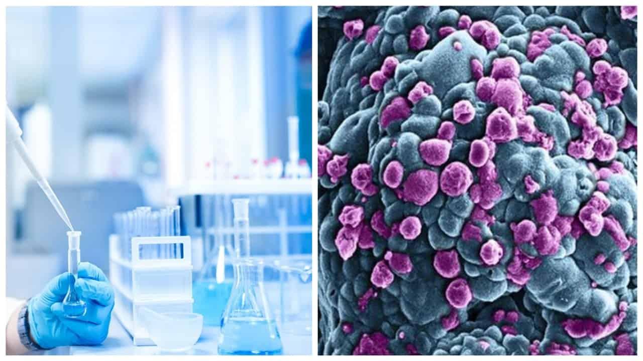 ricerca cancro