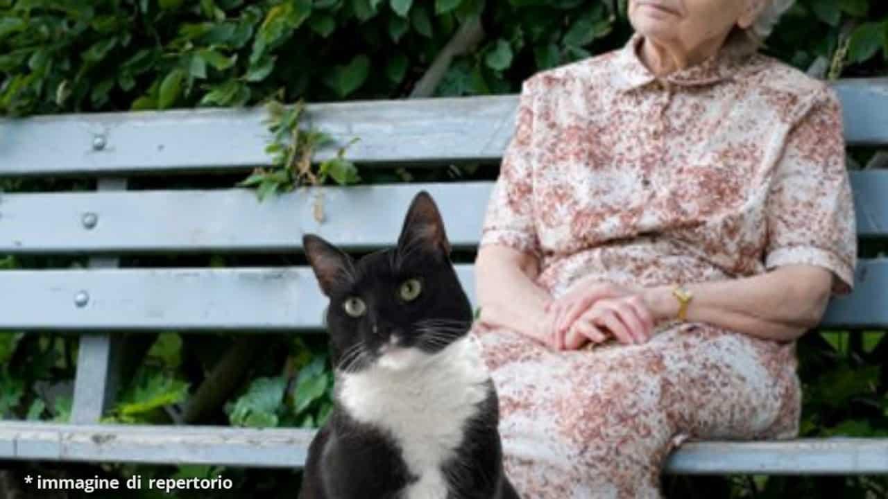 donna gatto morta