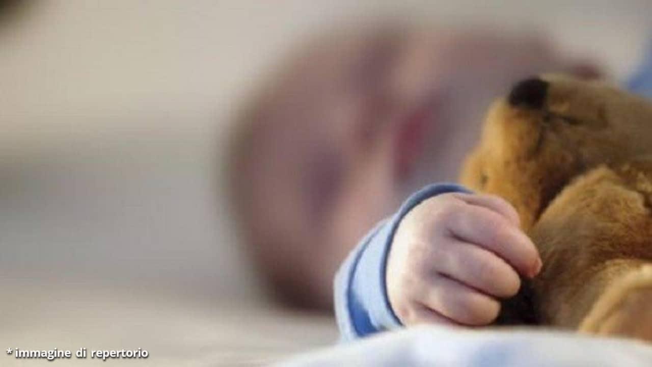 Bimbo di 3 anni si perde per 2 giorni nel bosco: salvato da un orso