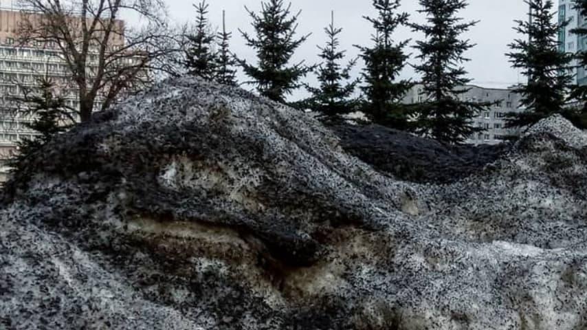Le montagne di neve nera