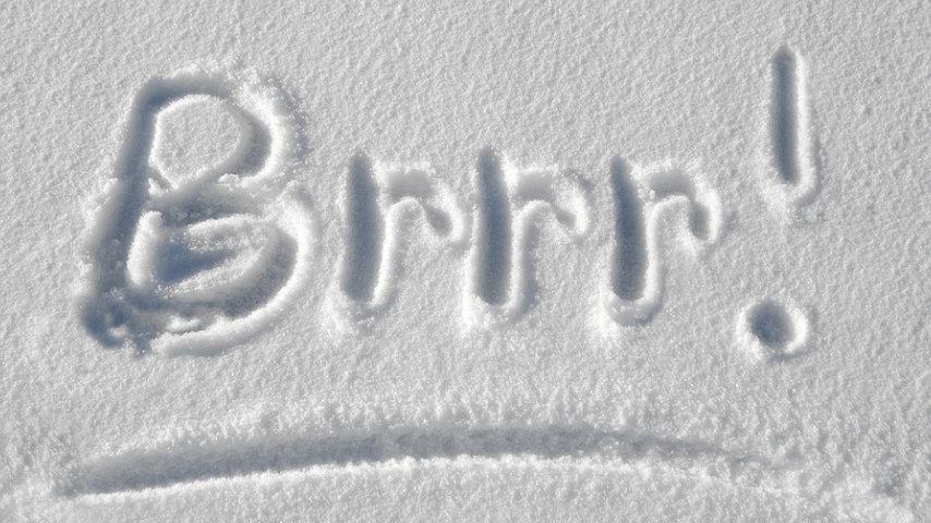 freddo neve