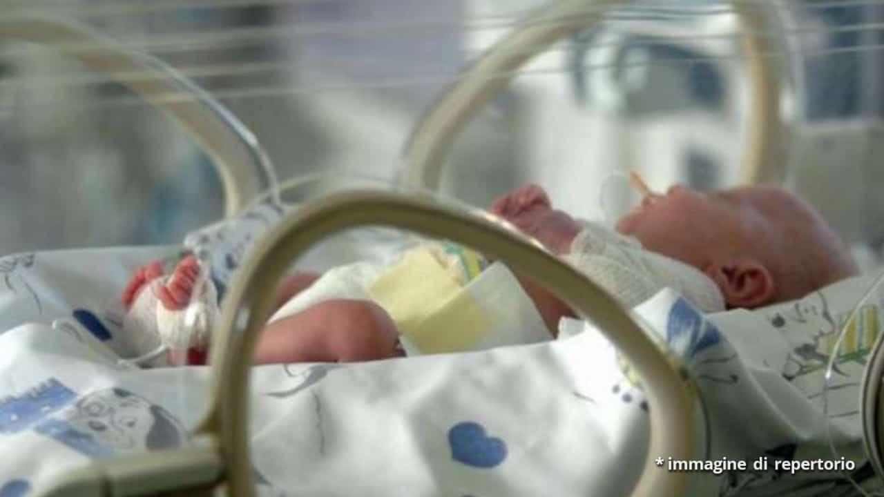 Torino, neonato morto dopo le dimissioni dell'ospedale: la madre vuole giustizia