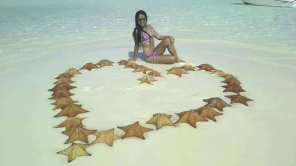 Ammazza 31 stelle marine per una foto