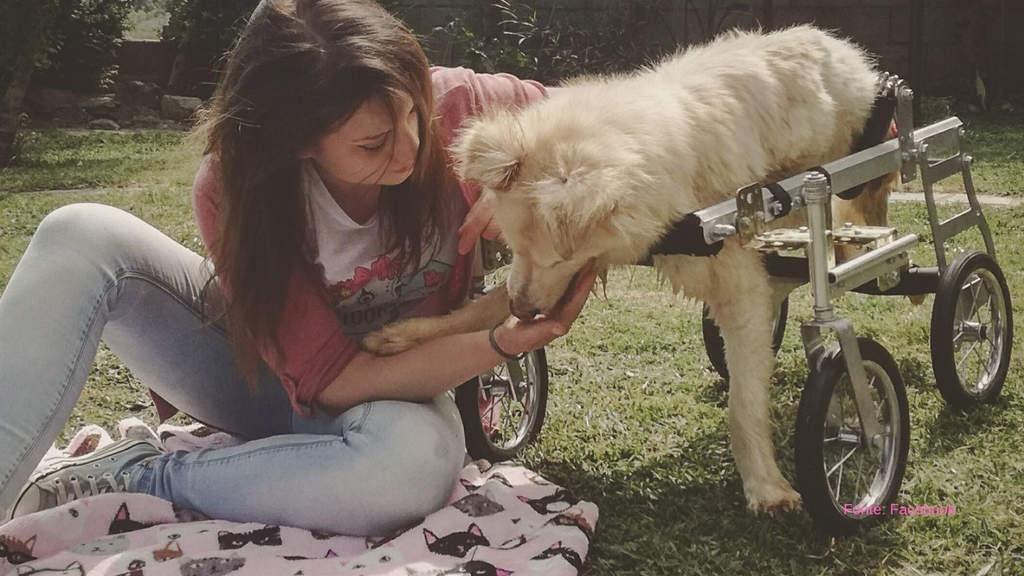 Debora Rizzo insieme ad un cane portatore di handicap