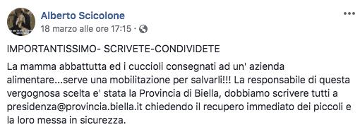 Alberto Scicolone su Facebook