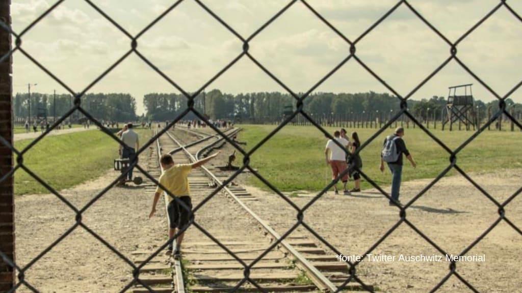 panoramica dietro delle grate sul campo di concentramento di aushwitz