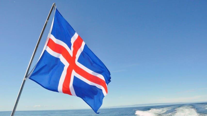 Balene in pericolo: l'Islanda programma la caccia a 2mila esemplari
