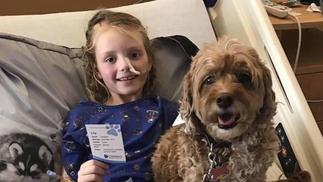 Emma Mertens: i cani la consolano