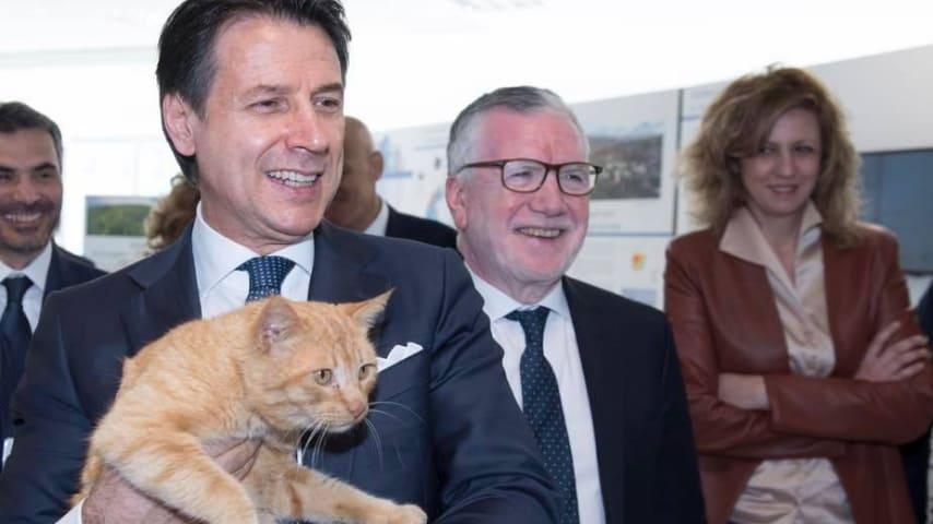 primo piano del premier giuseppe conte con in braccio il gatto merlino