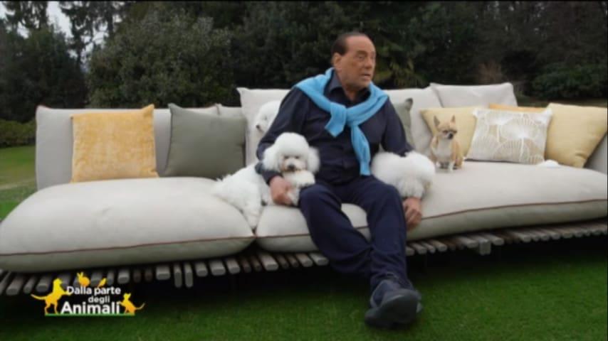 Silvio Berlusconi, fra tre cani, intervistato dalla Brambilla