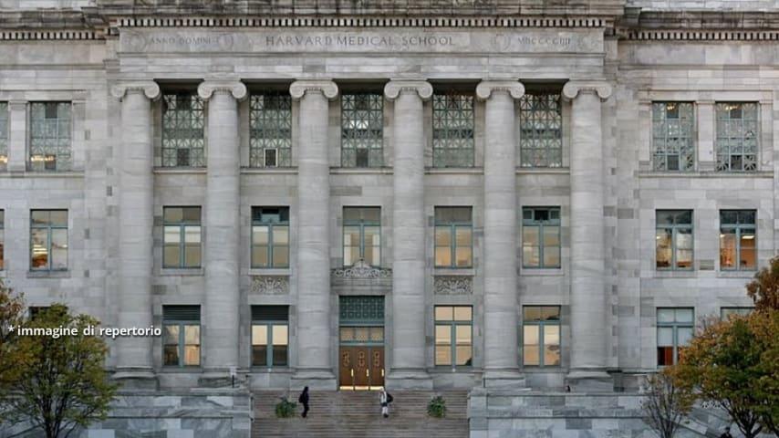 La Harvard Medical School di Boston, dov'è stata svolta la ricerca