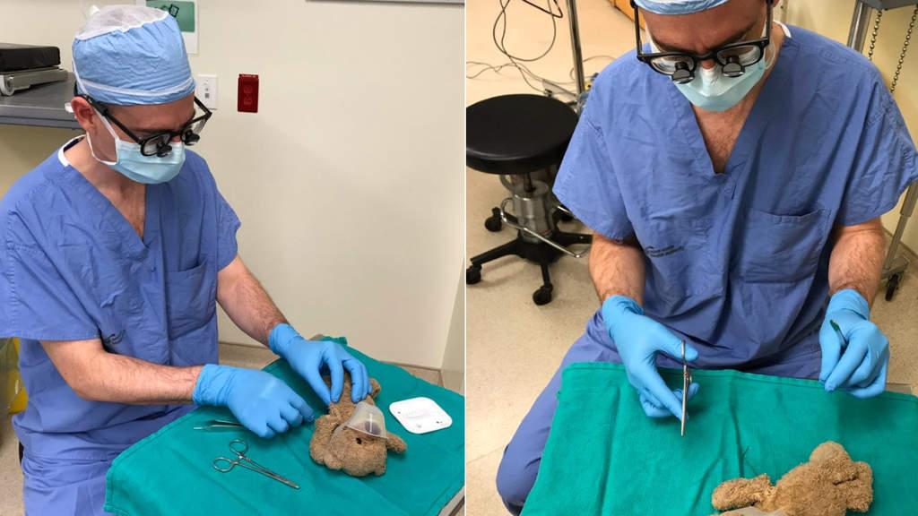 Il dottor Daniel McNeely opera l'orsacchiotto del suo paziente