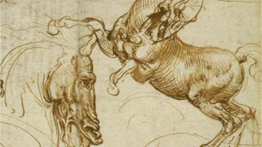 Da Vinci studia l'anatomia degli animali