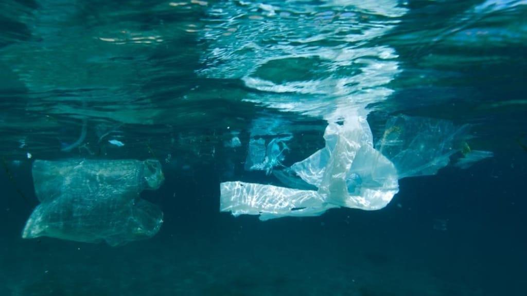 Borsa di plastca galleggia negli oceani