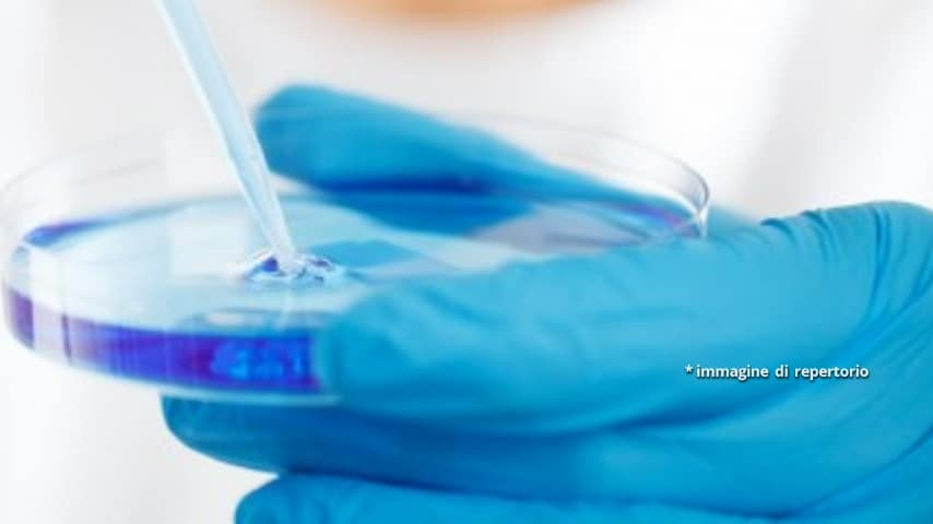 Il supergel è stato studiato per essere come un adesivo altamente biocompatibile