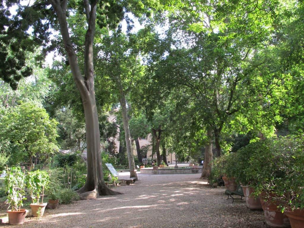 verde parco