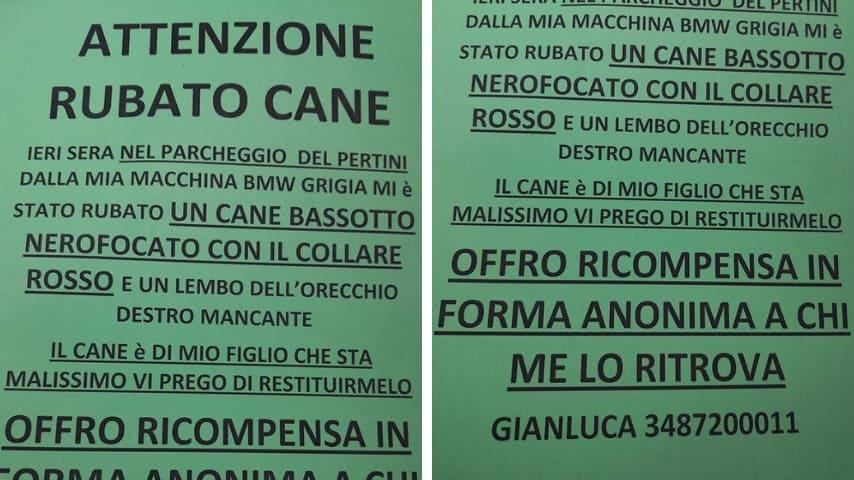 L'appello di Gianluca Ciaccio. Fonte: Gianluca Ciaccio/Facebook