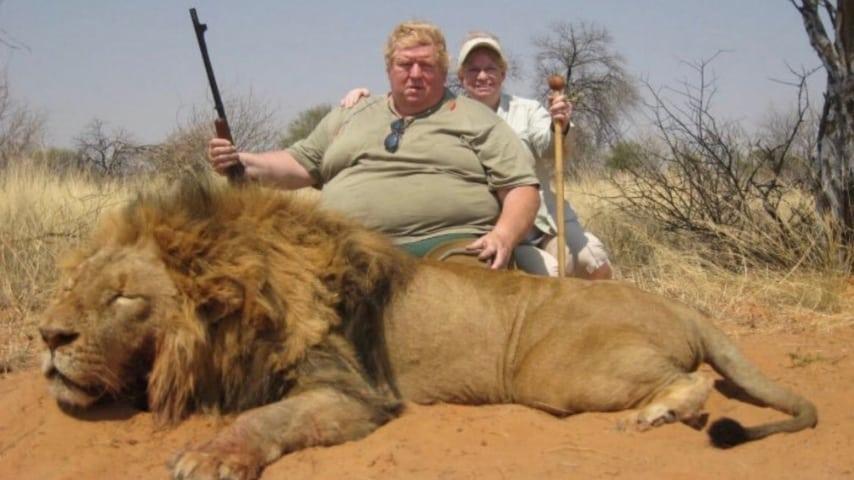 Leone cacciato in Sudafrica