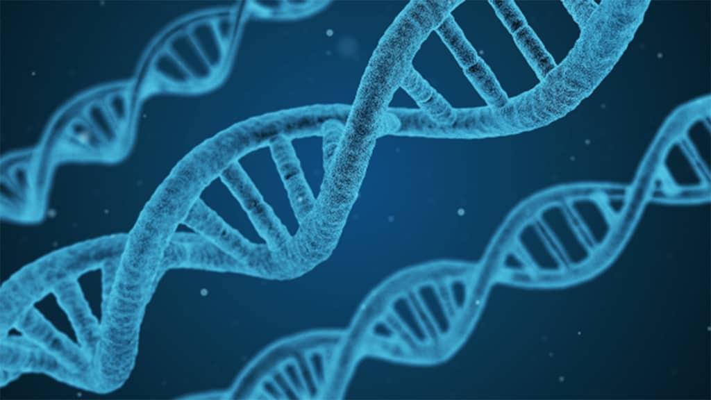 gene-rigetto-trapianti