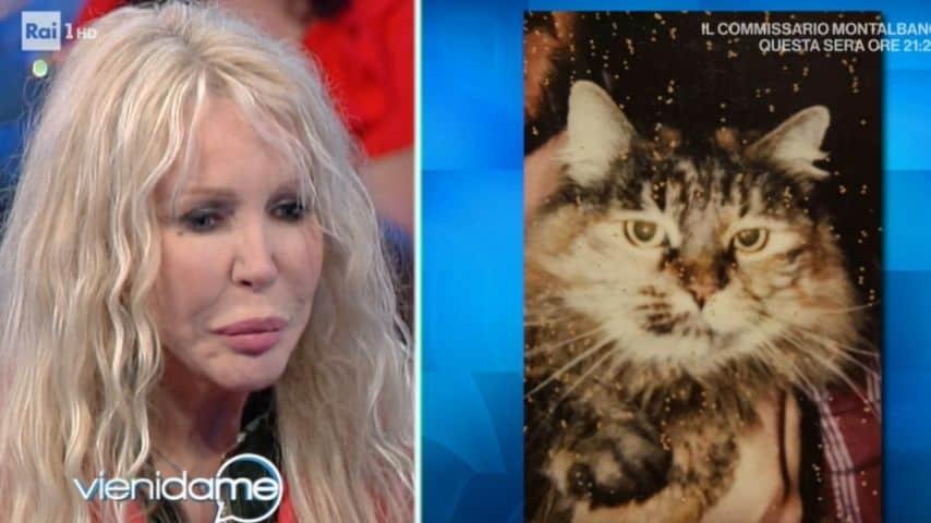ivana spagna e la foto del suo gatto
