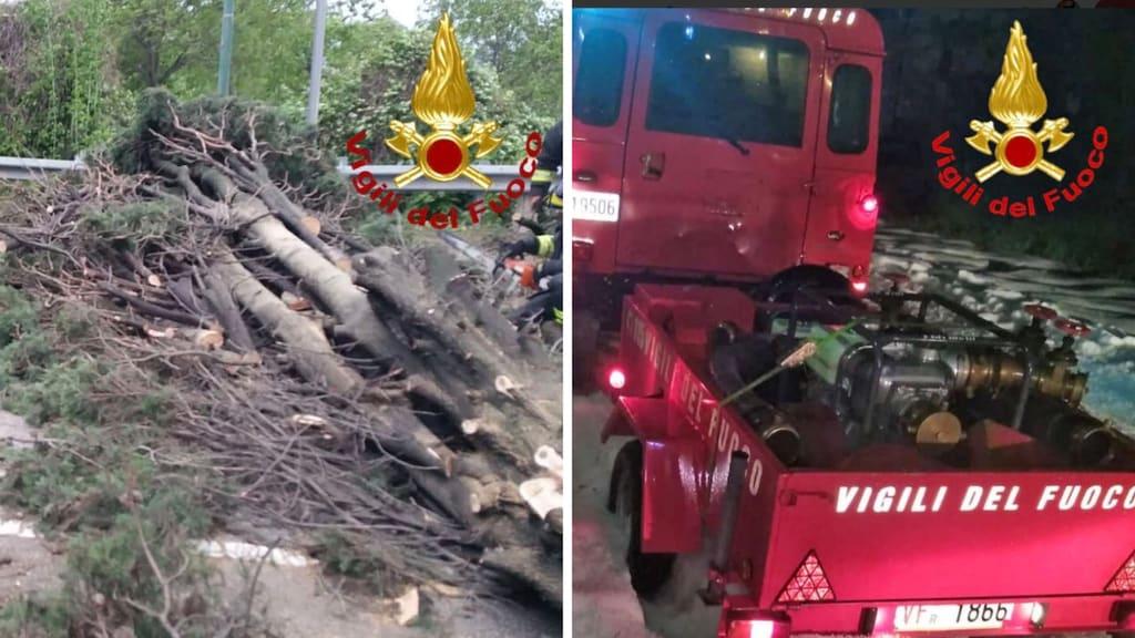 alberi caduti e operazioni dei vigili del fuoco