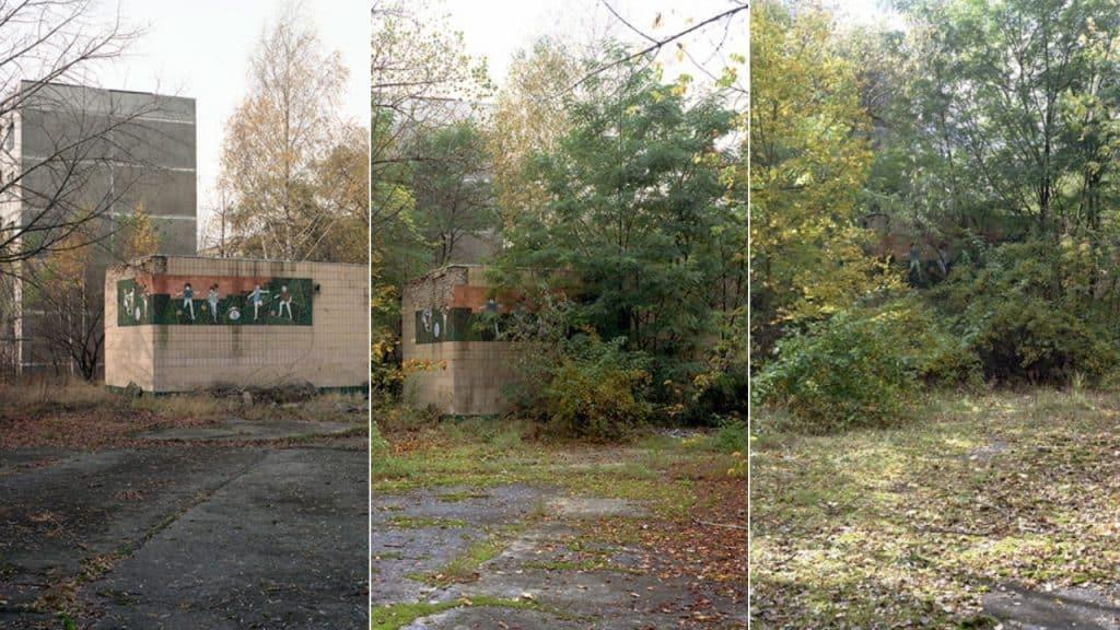 Chernobyl fotografie