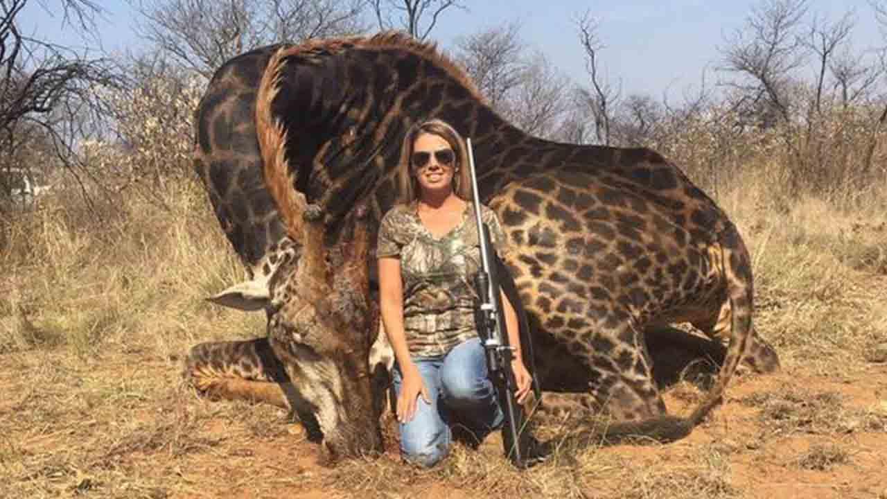 La cacciatrice Tess Talley davanti alla giraffa nera uccisa
