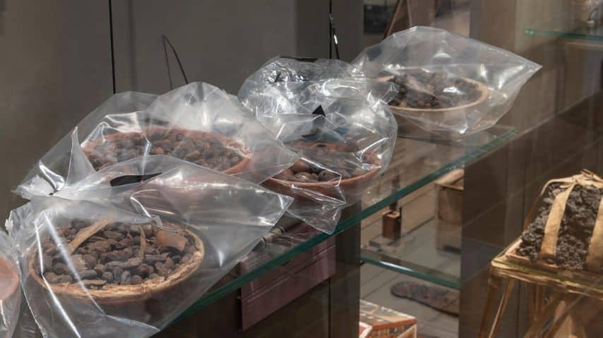 I vasi sigillati in sacchetti a tenuta stagna al Museo Egizio di Torino
