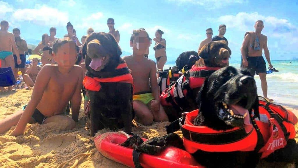 Bimbi salvati cani bagnini Trapani Facebook
