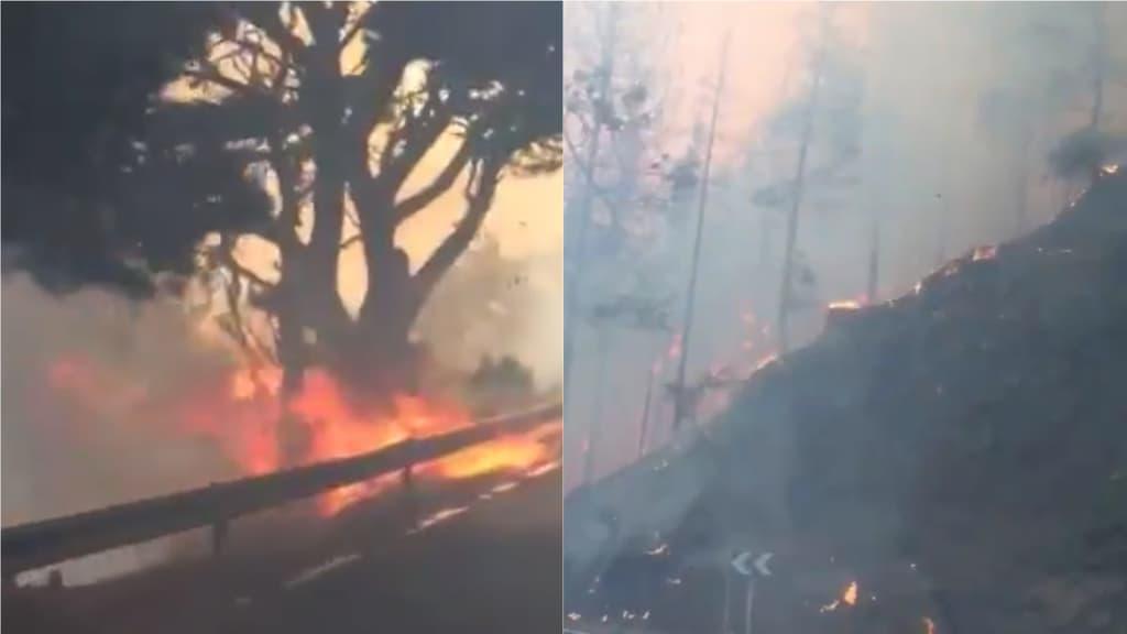 Gran Canaria continua a bruciare: