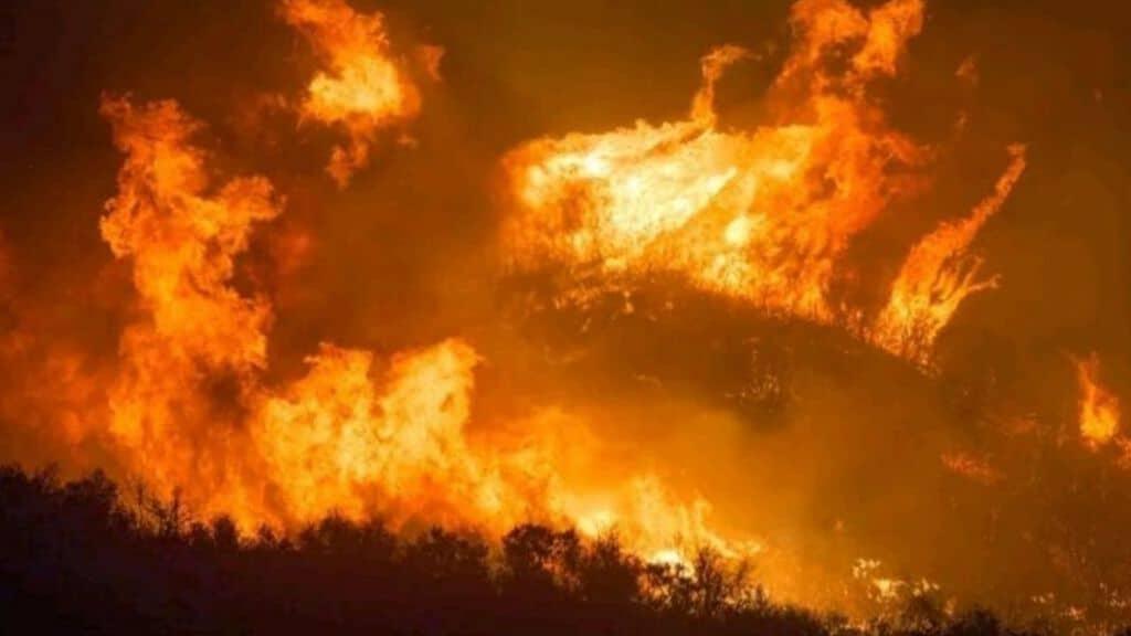 incendio in amazzonia