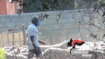 Grave episodio di caporalato a Brindisi. Pastore-schiavo 20enne del Gambia lavorava 14 ore al giorno e in condizioni disumane, pagato una miseria e senza riposo (Foto Carabinieri Brindisi)