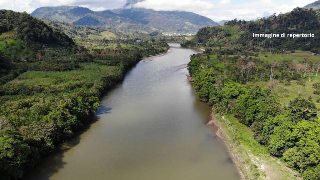 I delfini di fiume dell'Amazzonia a rischio estinzione. La causa: contaminazione da mercurio usato dalle compagnie minerarie. La denuncia del WWF (Immagine di repertorio)