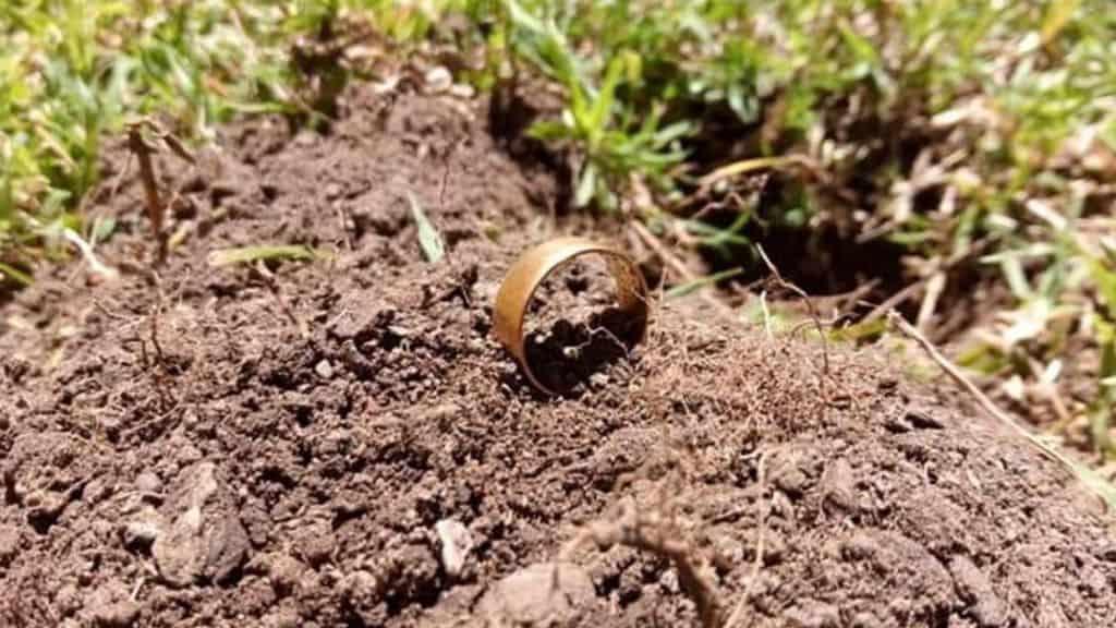 Michael Hill perse la sua fede nuziale in giardino. Dopo circa 40 anni, un cercatore di tesori l'ha ritrovata e restituita al proprietario. La coppia festeggerà presto il 50° anniversario (Foto Facebook Jual Butler)