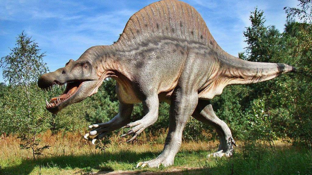 Dinosauro_Immagine di repertorio