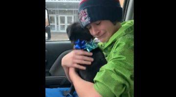 Carter e il cane Piper