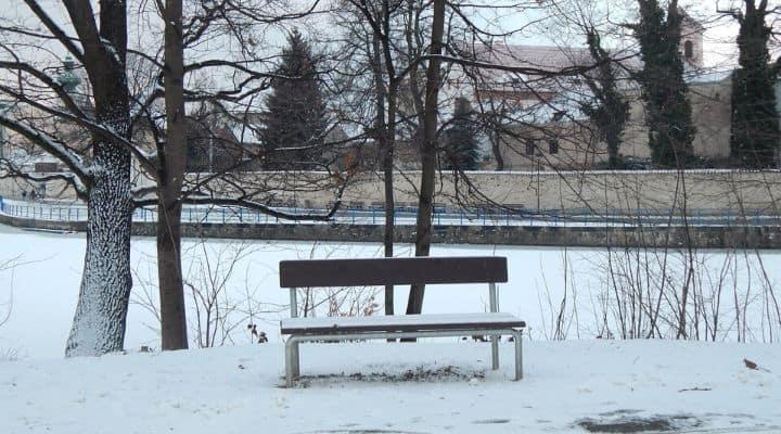 Parco con neve