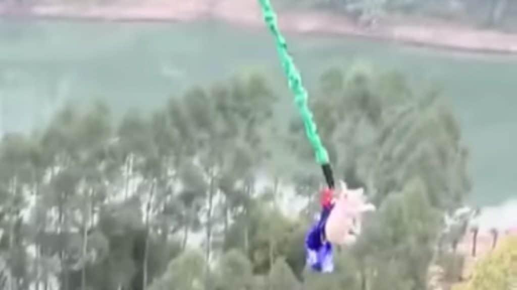 Cina, lanciano un maiale per inaugurare bangee jumping, rabb