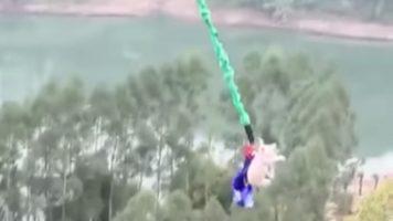 un maiale che vola