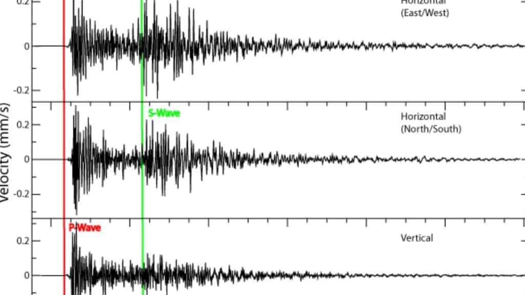 Violento terremoto scuote l'isola: è allarme tsunami. Trema