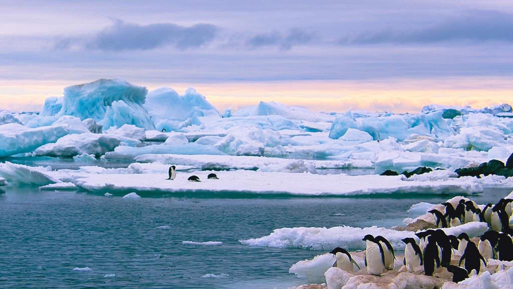 In Antartide la neve diventa rossa come il sangue: la foto sbalorditiva dei ricercatori